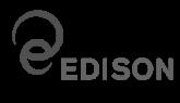 EdisonStandardsItalian_Logo-1_0[1]